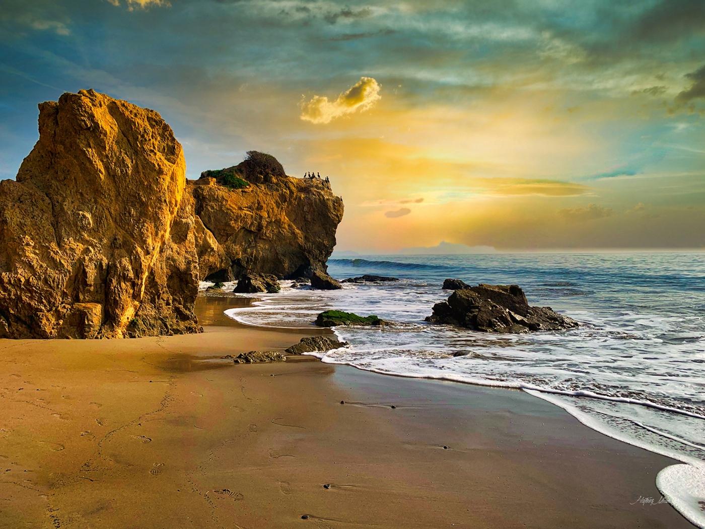 Bison-Beach