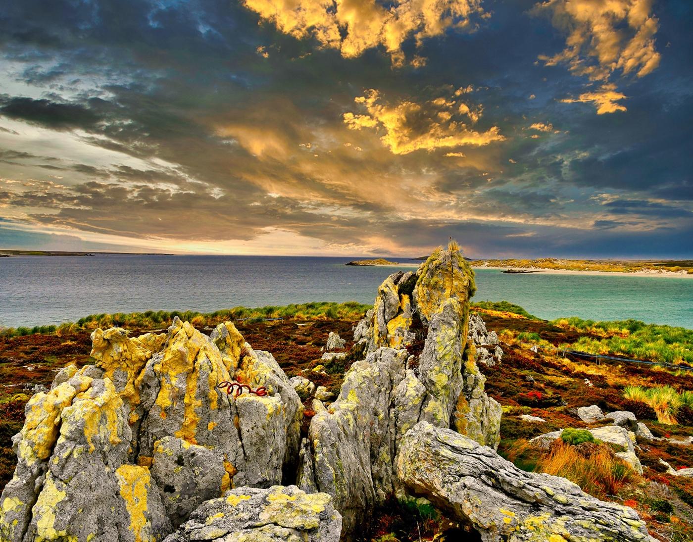 Falkland-Islands