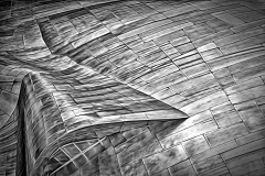 2019-CAPA-HONOURS-MARQUEE-Curve-Lines-Competition