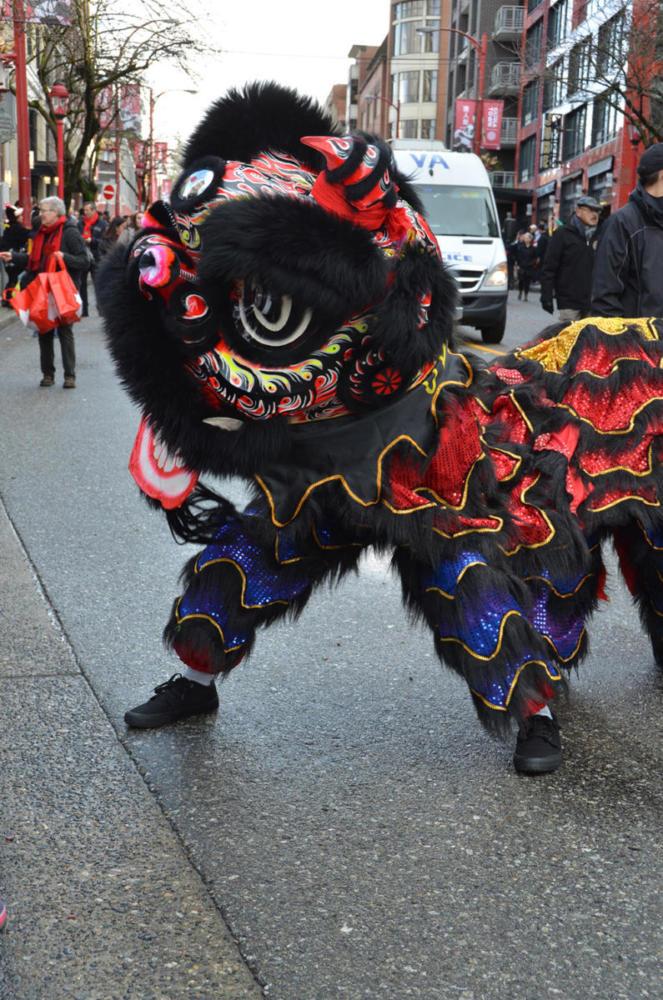 Lion-Dancer